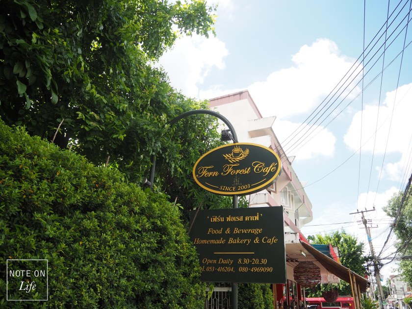 Fern Forest Cafe_Chiangmai_Northern Thailand