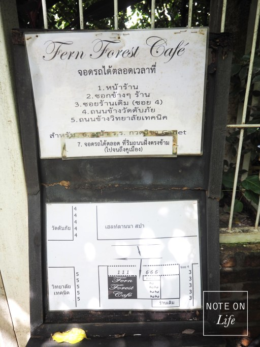 Fern Forest Cafe Chiangmai Northern Thailand