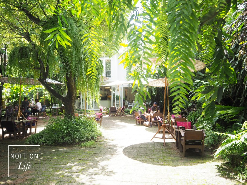 Fern Forest Cafe Northern Thailand Chiang Mai