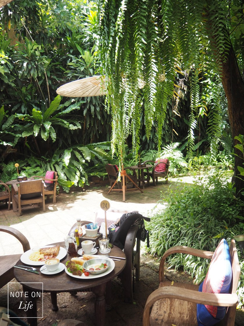 Fern Forest Cafe Chiang Mai Northern Thailand