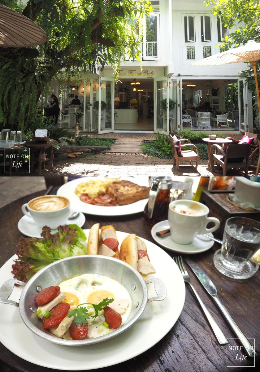 Fern Forest Cafe_ Chiangmai Northern Thailand Travel