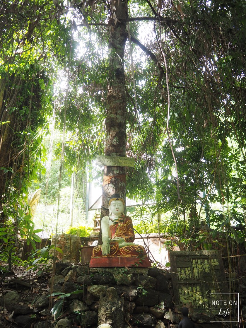 Wat Pha Lat_Chiangmai_Thailand Travel