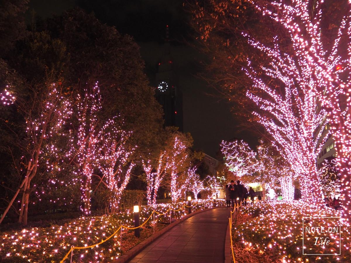Illuminated Christmas inTokyo