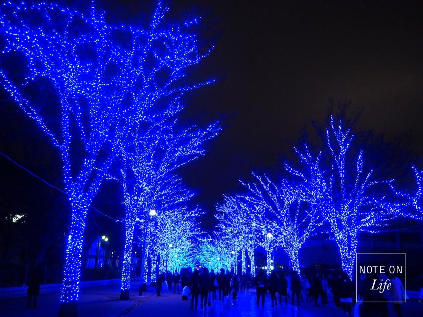 Shibuya Christmas Tokyo 青の洞窟