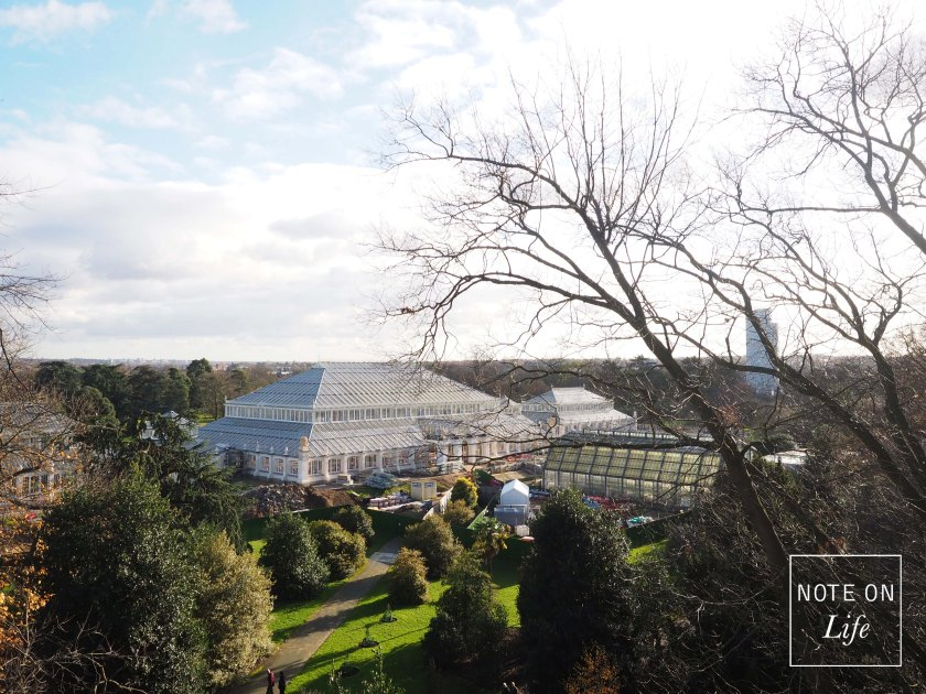 Kew Garden - Temperate House London