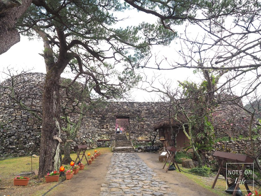 Heirojo Gate Okinawa Sakura Cherry Blossom Travel