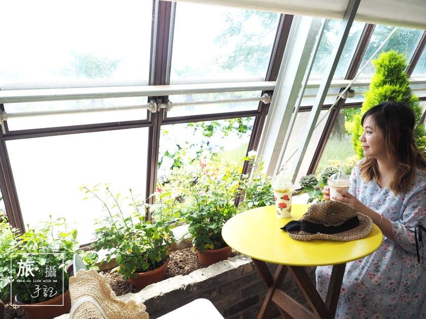Cameilla hill Jeju Island Korea 山茶花之丘濟州